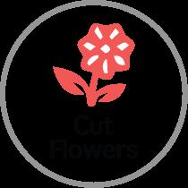 Cut Flowers icon