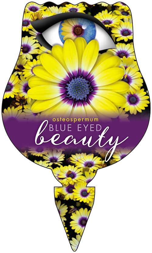 Osteo Blue Eyed Beauty Label