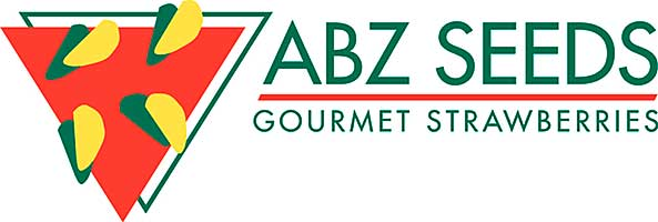 ABZ Logo