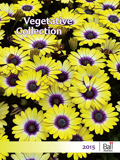 Ball Vegetative Catalogue 2015