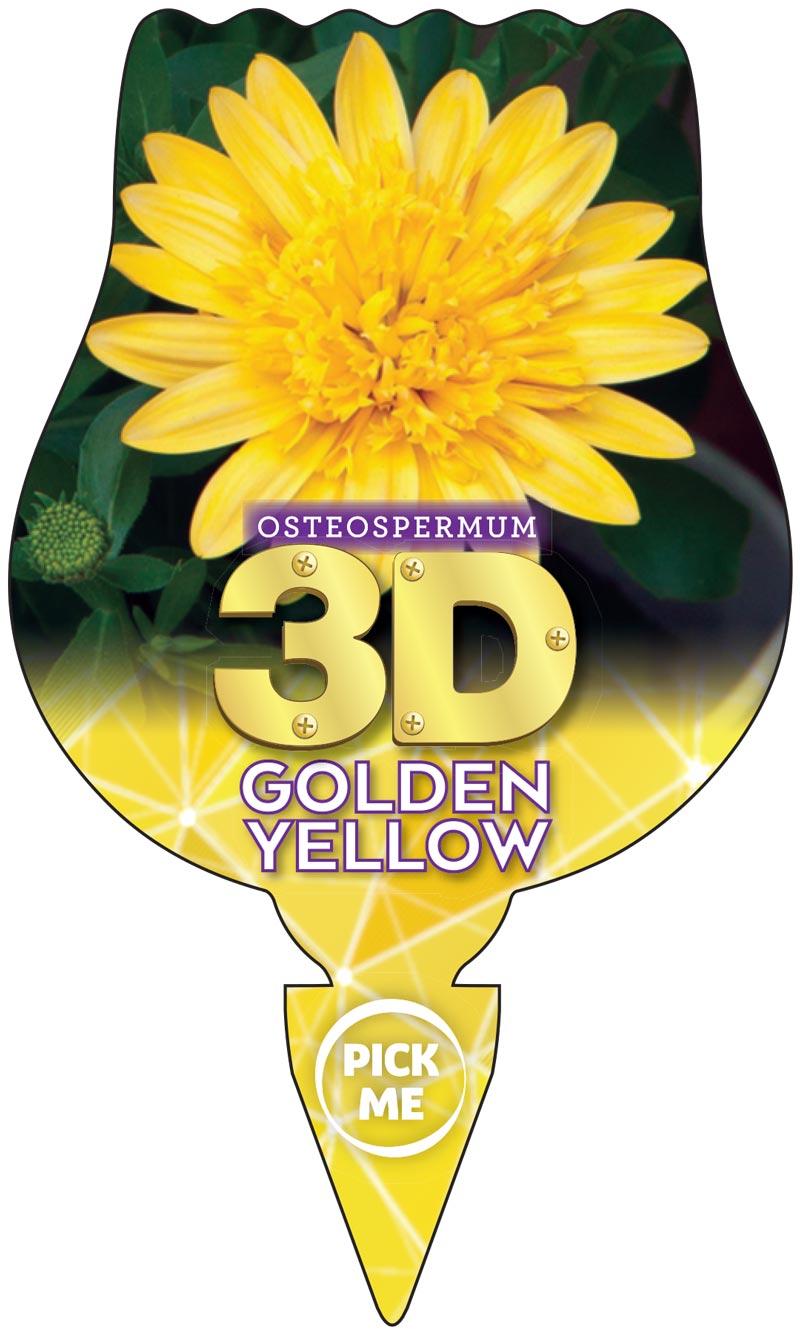Osteospermum 3D Label