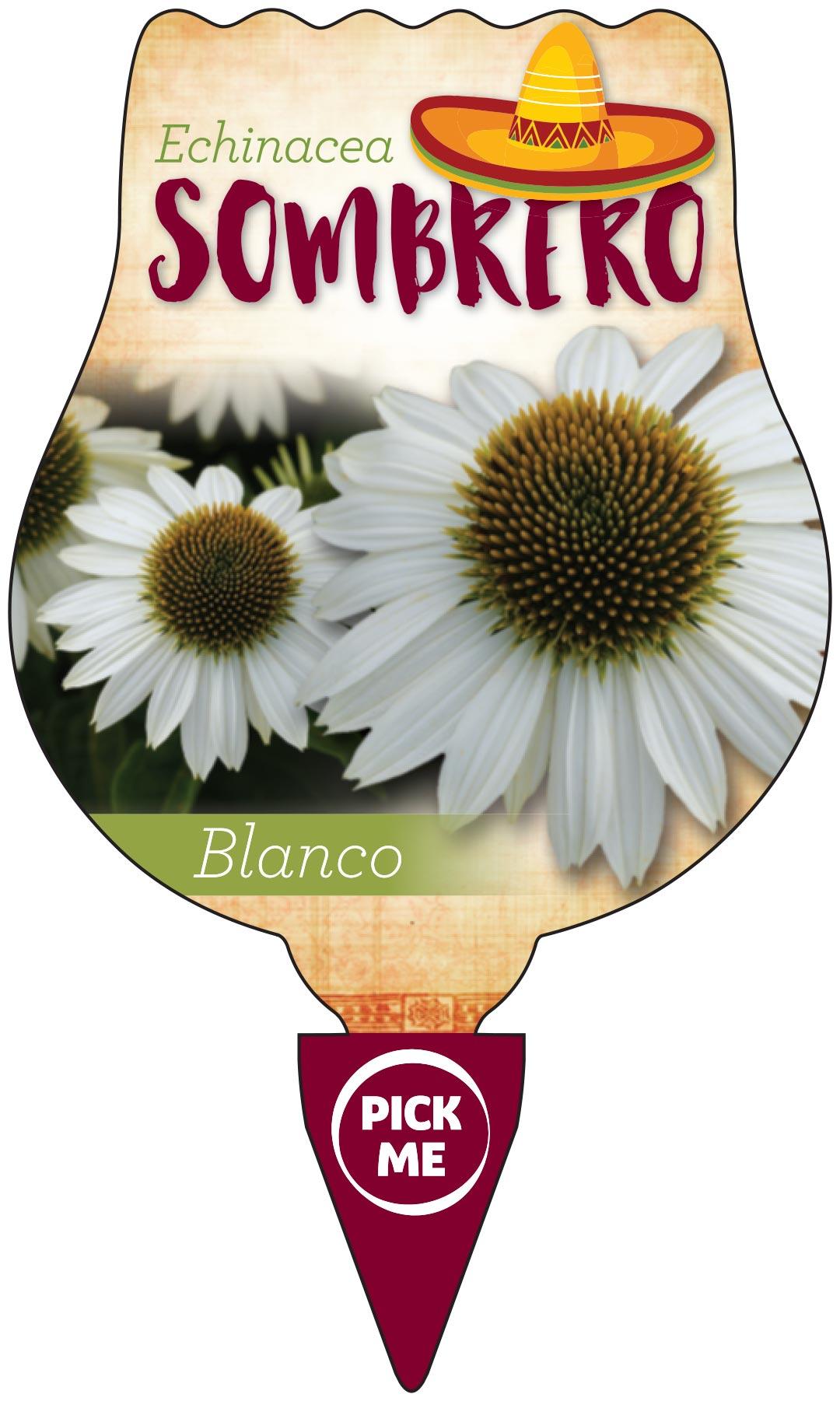 Echinacea Sombrero Label