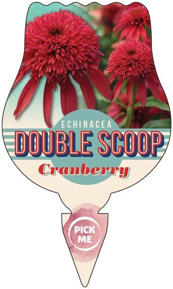 Echinacea Double Scoop Label