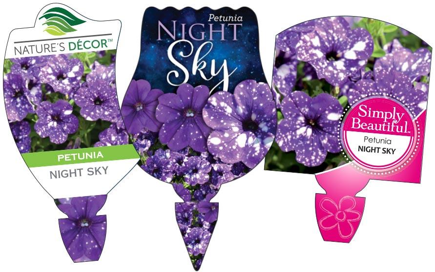 Petunia Night Sky Labels