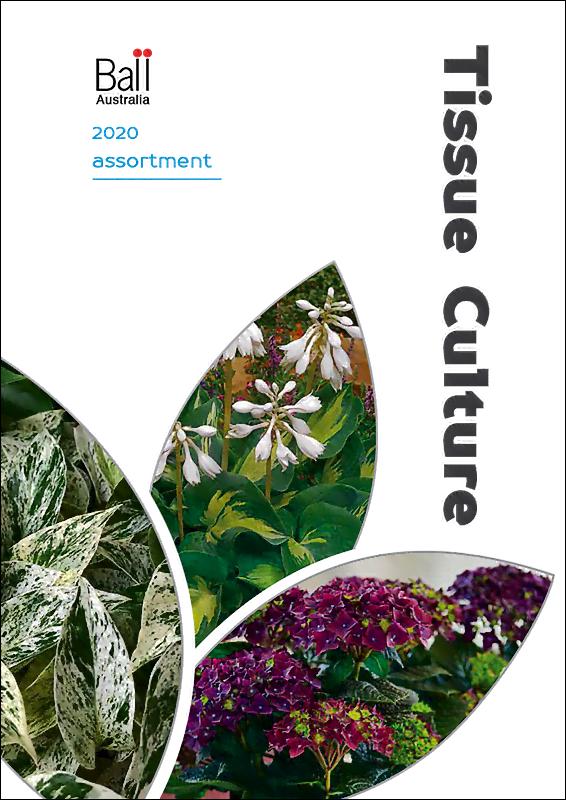Tissue Culture Brochure 2020