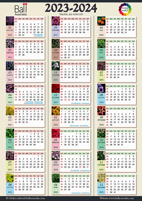 Ball Planning Calendar 2020 - 2026